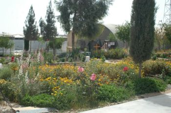 The beautiful flower garden in Laskar Gah camp