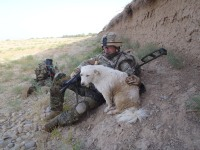 "WO2 Scott Smith with Juno (aka ""Dave""), the D Company Dog"