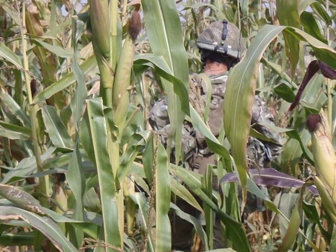 B Company on patrol in Nahr-e-Saraj