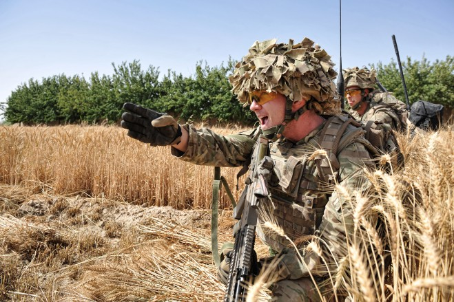 A Royal Engineer searcher gives orders in the cornfield