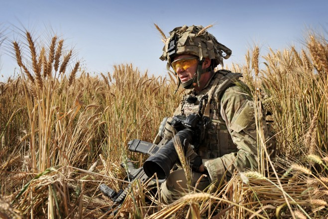"The author reminiscing in a field of corn. ""Geordie"" –Engineer Search teams, 22 RE"