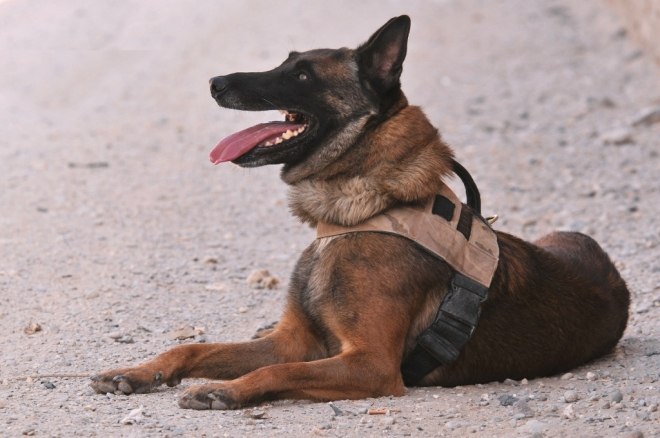 MWD – Time out