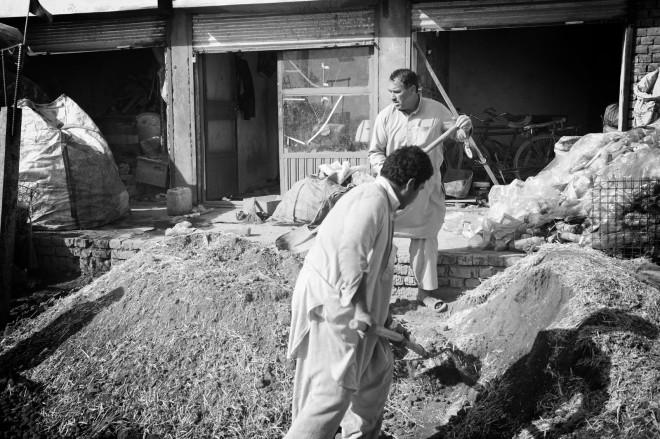 Afghan workers