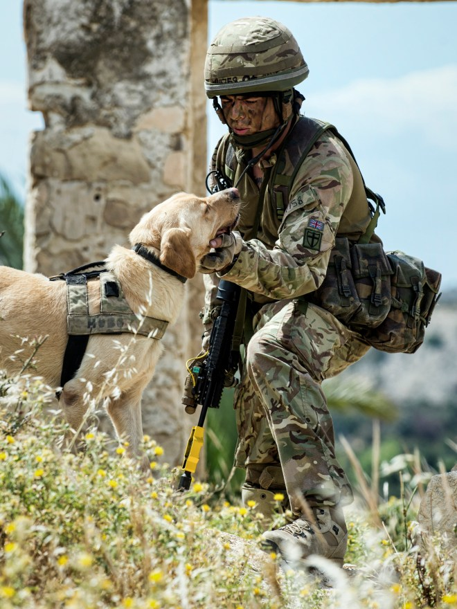 Pictured: Lance Corporal Ryan Millican  shows affection to his search dog, Otis during an Exercise in Cyprus.