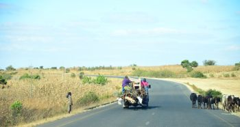 Road to Harare from Lilingwe